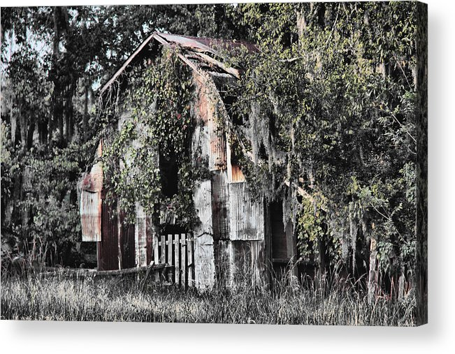 Barn Acrylic Print featuring the photograph At The Barn by Greg Sharpe