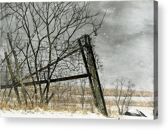 Fence Post Acrylic Print featuring the photograph At The End...fence Post by Stephanie Calhoun