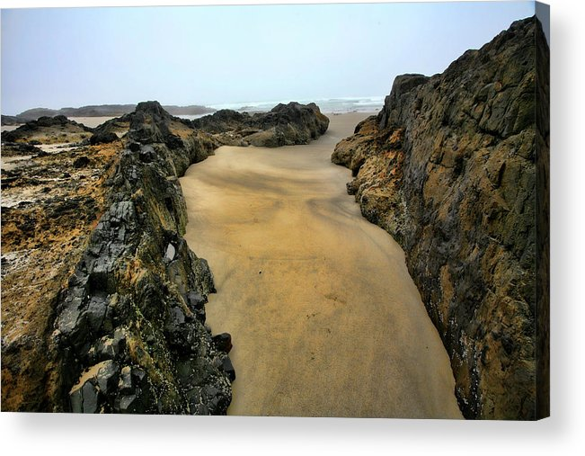 Tidepool Acrylic Print featuring the photograph At The Tidepool by Bonnie Bruno