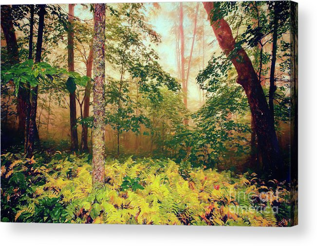 Ferns Acrylic Print featuring the digital art Autumn Fall Colors - Brilliant Ferns In The Blue Ridge Ap by Dan Carmichael