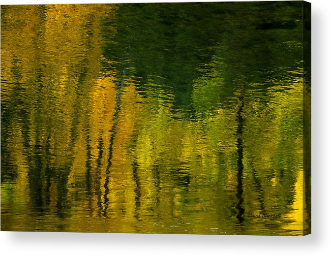 Water Acrylic Print featuring the photograph Autumn In Truckee by Donna Blackhall