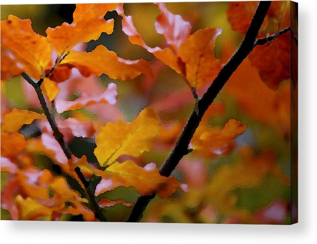 Leaves Acrylic Print featuring the painting Autumn by Mary Gaines
