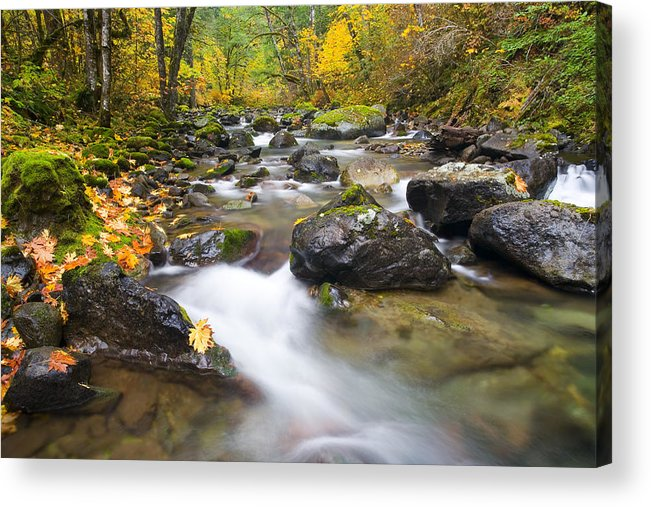 Fall Acrylic Print featuring the photograph Autumn Passing by Mike Dawson