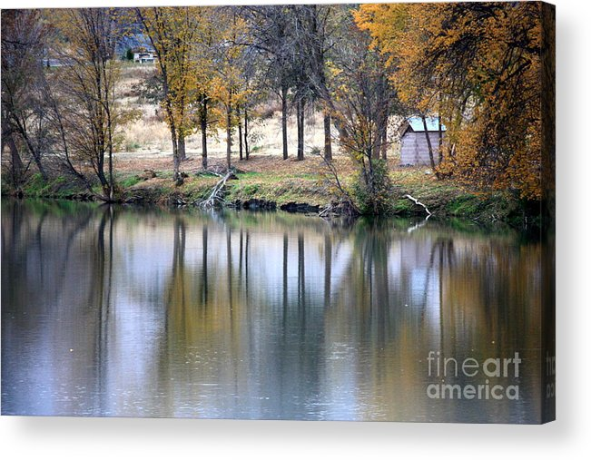 Fall Reflection Acrylic Print featuring the photograph Autumn Reflection 16 by Carol Groenen