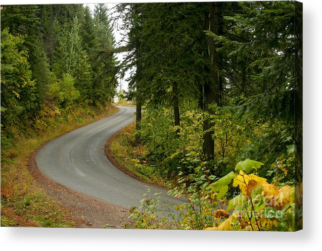Road Acrylic Print featuring the photograph Autumn Road by Idaho Scenic Images Linda Lantzy