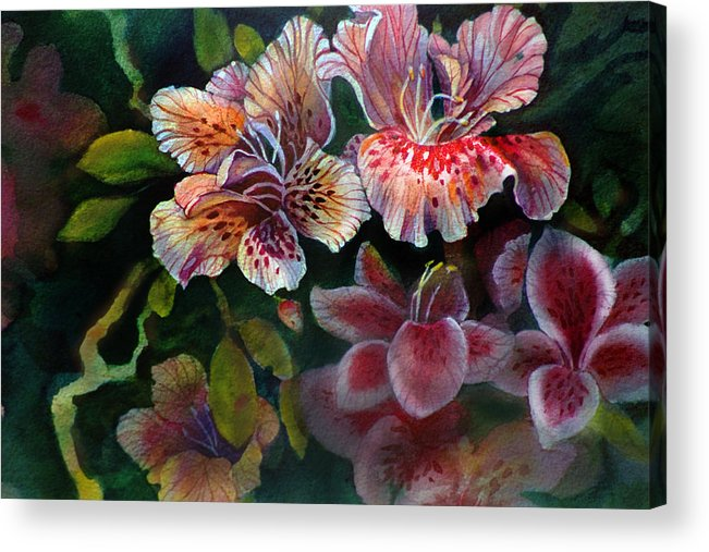 Flower Acrylic Print featuring the painting Azalea by Gertrude Palmer