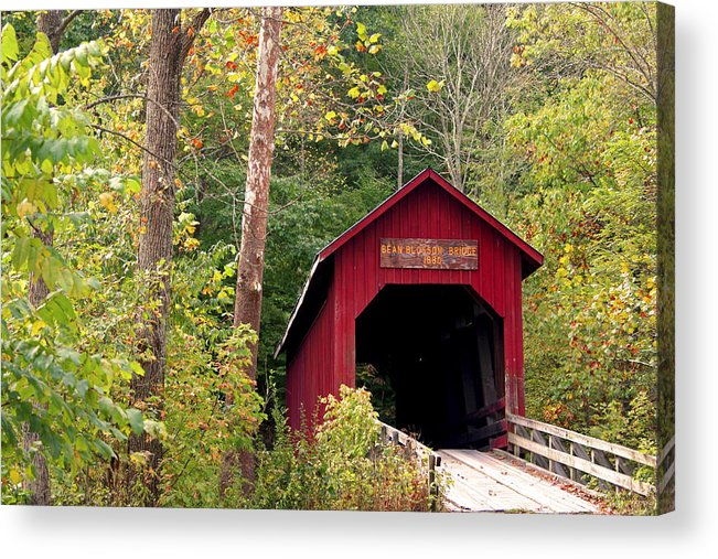 Covered Bridge Acrylic Print featuring the photograph Bean Blossom Bridge II by Margie Wildblood