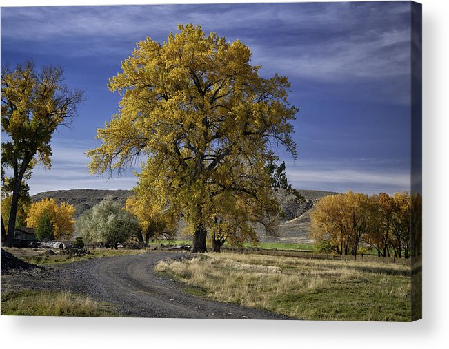 Beautiful Photos Acrylic Print featuring the photograph Belfry Fall Landscape 5 by Roger Snyder