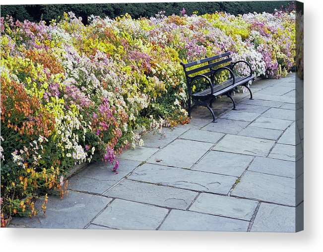 Fall Flowers? Acrylic Print featuring the photograph Bench by Wes Shinn