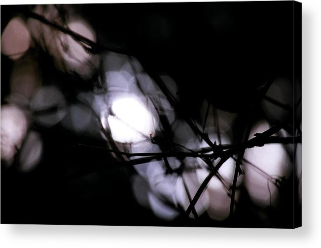Trees Acrylic Print featuring the photograph Beyond Recognition 1 by CD Good