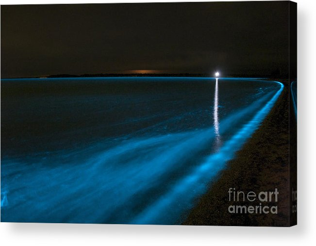 Bioluminescence Acrylic Print featuring the photograph Bioluminescence In Waves by Philip Hart