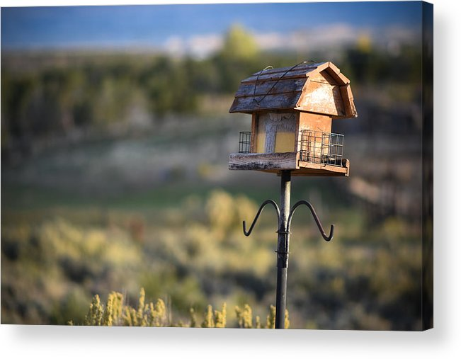 Birdhouse Acrylic Print featuring the photograph Birdhouse On Stilts by Sharon Wunder Photography