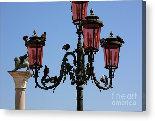 Venice Acrylic Print featuring the photograph Birds On A Lamp Post In Venice by Michael Henderson