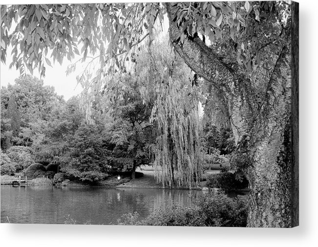 Lake Acrylic Print featuring the photograph Black And White Tranquility by Rodger Mansfield