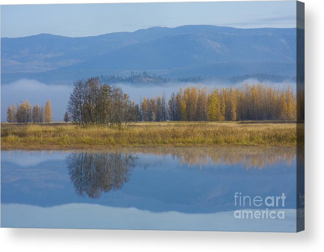 Blue Acrylic Print featuring the photograph Blue And Gold by Idaho Scenic Images Linda Lantzy