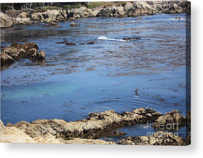 California Acrylic Print featuring the photograph Blue California Bay by Carol Groenen