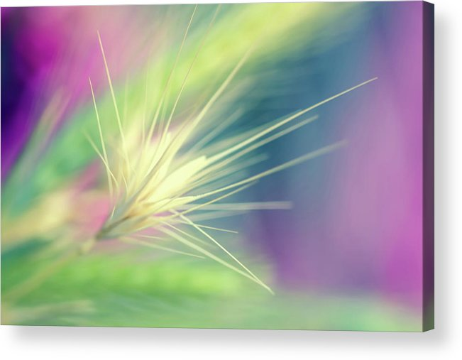 Bright Colors Acrylic Print featuring the digital art Bright Weed by Terry Davis