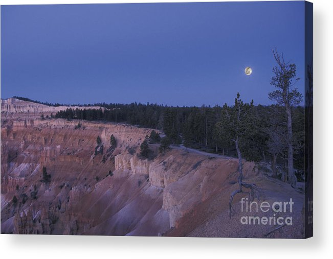 Utah Acrylic Print featuring the photograph Bryce Before Dawn by Stan and Anne Foster