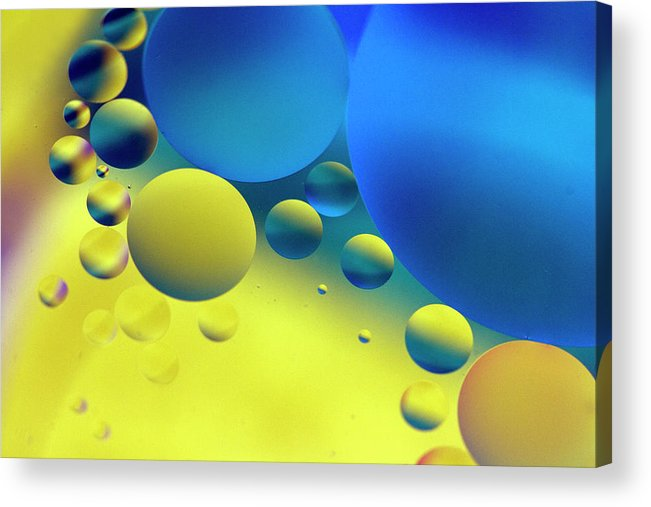 Oil Acrylic Print featuring the photograph Bumping by Rebecca Cozart