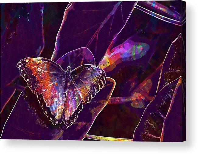 Butterfly Insect Leaves Plant Acrylic Print by PixBreak Art