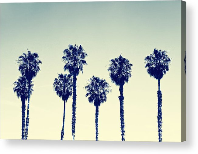 California Acrylic Print featuring the photograph California Palm Trees by Anna Floridia