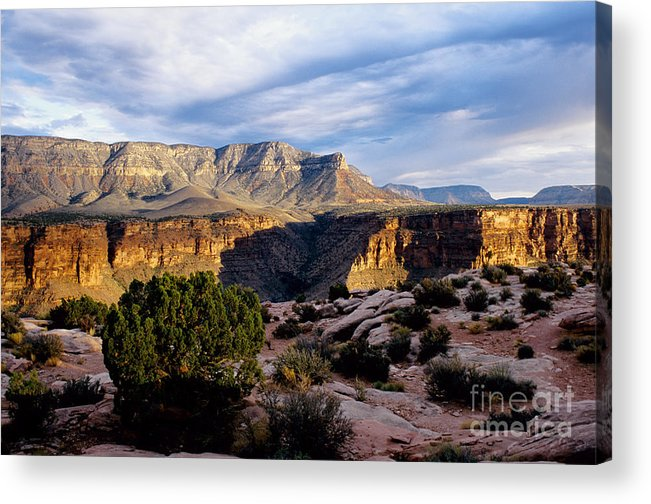 Toroweap Acrylic Print featuring the photograph Canyon Walls At Toroweap by Kathy McClure