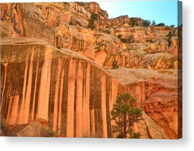 Capitol Reef National Park Acrylic Print featuring the photograph Capitol Gorge Desert Varnish by Ray Mathis