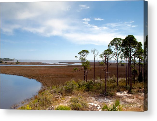 Landscape Acrylic Print featuring the photograph Carrabelle Salt Marshes by Rich Leighton