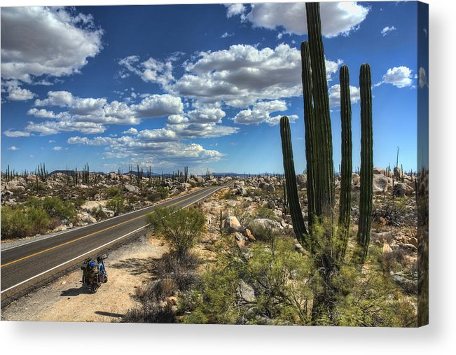 Baja Acrylic Print featuring the photograph Center Of The Baja by Rich Beer