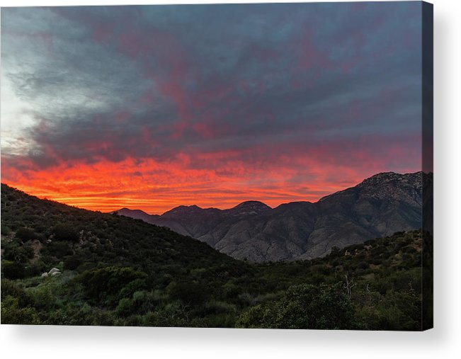 California Acrylic Print featuring the photograph Chaparral Dreams by TM Schultze