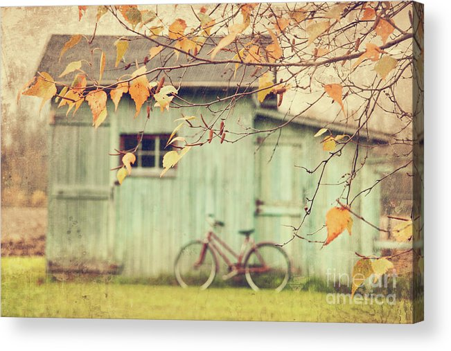 Agriculture Acrylic Print featuring the photograph Closeup Of Leaves With Old Barn In Background by Sandra Cunningham