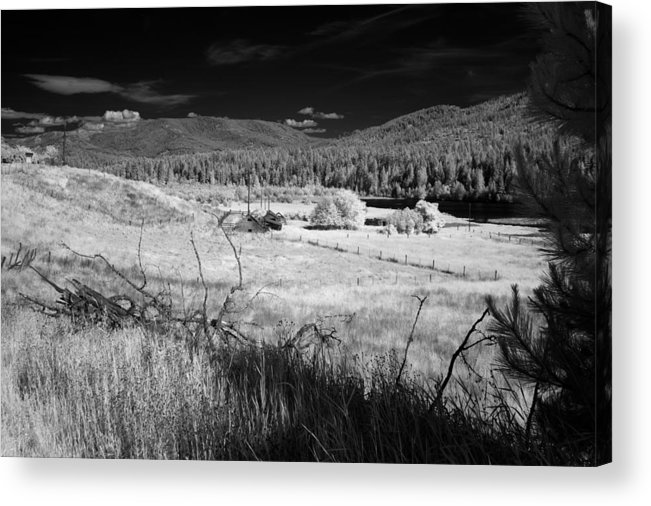 B&w Acrylic Print featuring the photograph Cocolala Creek 2 by Lee Santa
