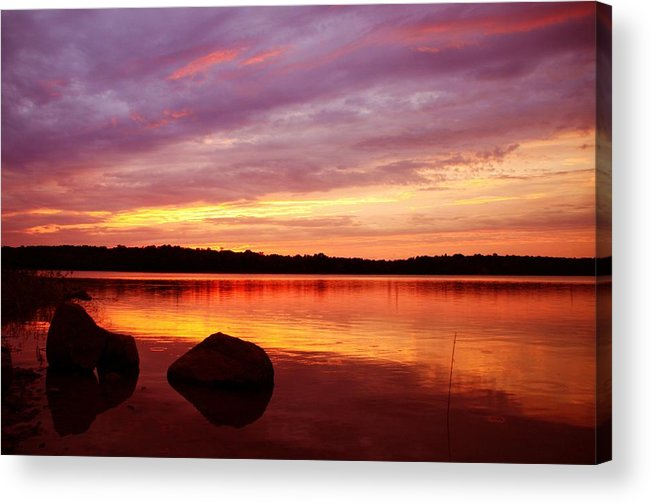 Landscape Acrylic Print featuring the photograph Constant Stimulus by Mitch Cat