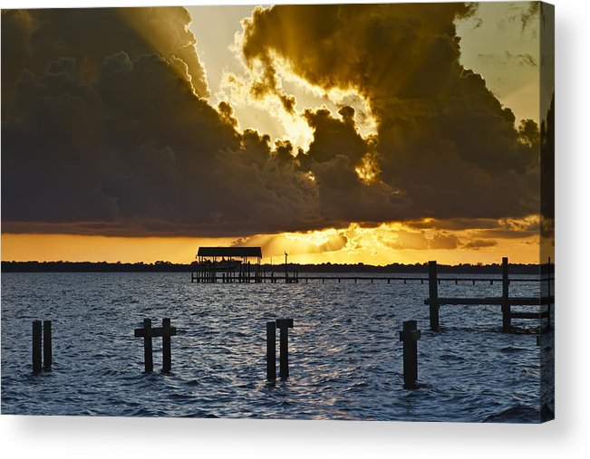 Bay Acrylic Print featuring the photograph Courtship by Janet Fikar