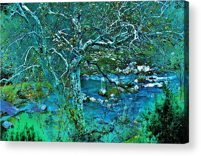Verde River Acrylic Print featuring the photograph Creekside by Helen Carson
