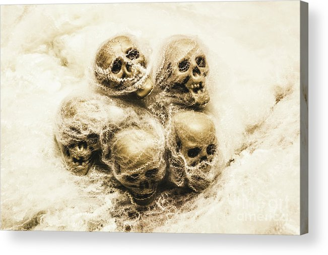 Cobwebs Acrylic Print featuring the photograph Creepy Skulls Covered In Spiderwebs by Jorgo Photography - Wall Art Gallery