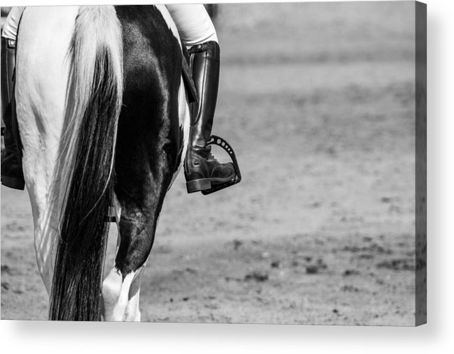 Dressage Acrylic Print featuring the photograph Day At The Dressage by Vanora Naude