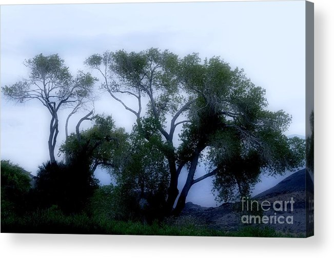 Death Acrylic Print featuring the photograph Desert At Night by Kathleen Struckle