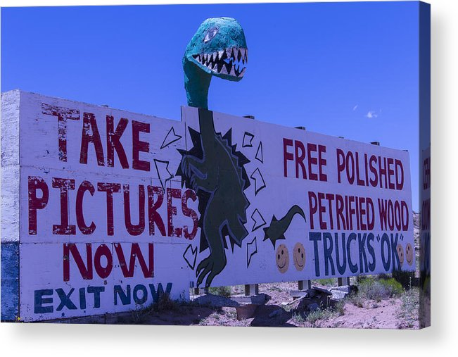 Roadside Dinosaur Acrylic Print featuring the photograph Dinosaur Sign Take Pictures Now by Garry Gay