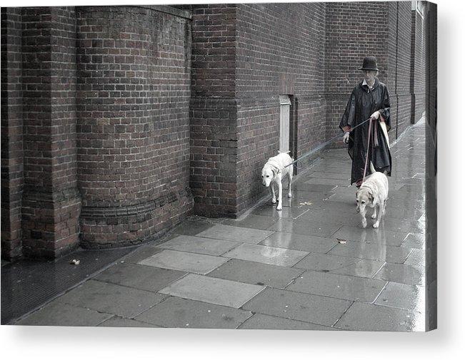 Jez C Self Acrylic Print featuring the photograph Doggie Strolling 1 by Jez C Self