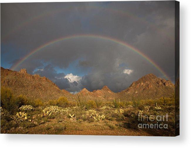 Arizona Acrylic Print featuring the photograph Double Rainbow Tucson Arizona by Louis Amore
