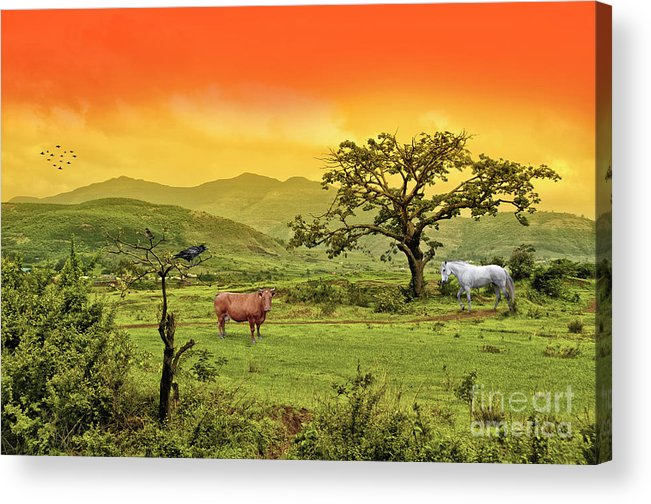 Nature Acrylic Print featuring the photograph Dreamland by Charuhas Images