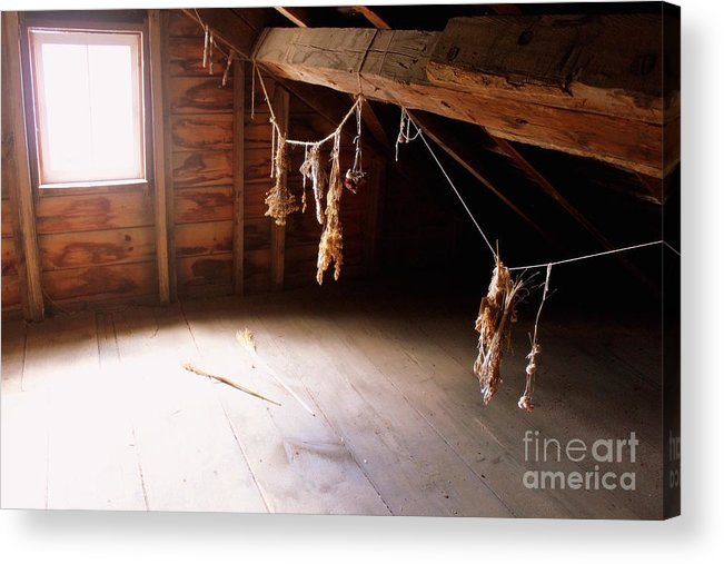 Attic Acrylic Print featuring the photograph Drying Herbs In Attic by Samiksa Art