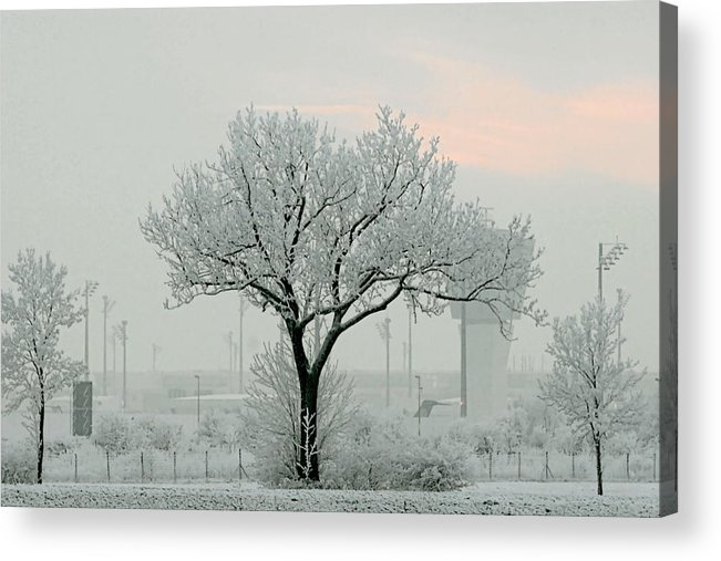 White Acrylic Print featuring the photograph Eerie Days by Christine Till