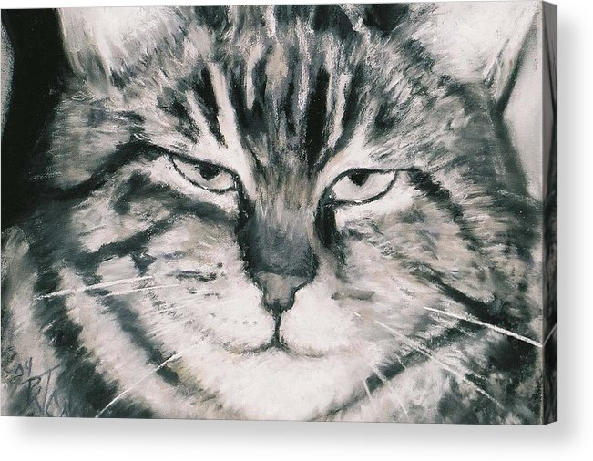 Close Up Of Tabby Cat Acrylic Print featuring the painting El Gato by Billie Colson