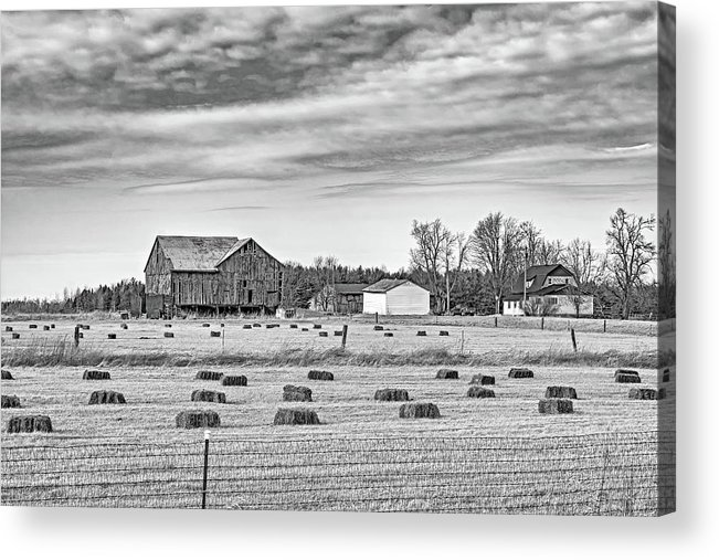 Ontario Acrylic Print featuring the photograph Emergence _ The Hues Of Spring Bw by Steve Harrington