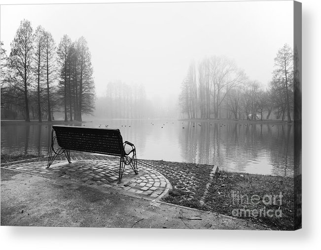 Landscape Acrylic Print featuring the photograph Empty by Ciprian Dumitrescu