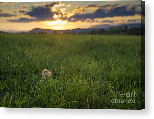 Summer Acrylic Print featuring the photograph End Of Summer by Alana Ranney