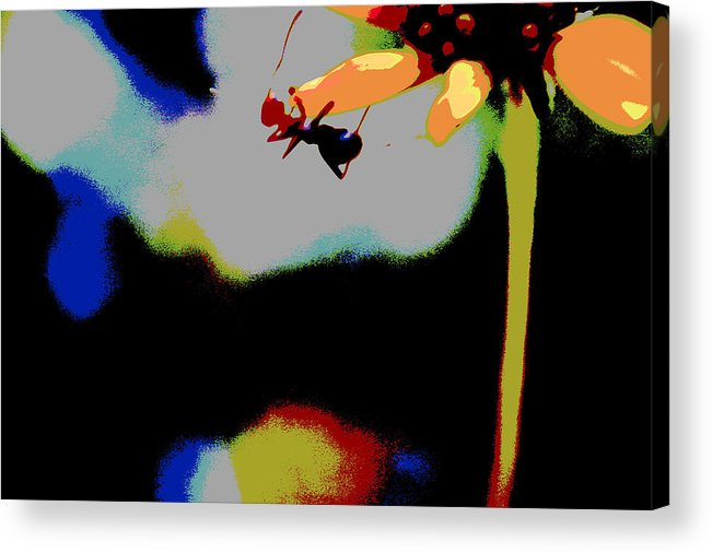 Ant Acrylic Print featuring the photograph Escape by Nabila Khanam