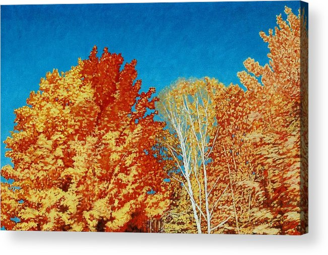 Fall Color Acrylic Print featuring the painting Fall by Allan OMarra